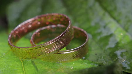 боке : Close - up of two gold wedding rings mounted on a green tree (flower) leaf and watered with splashes (drops) of water. HD
