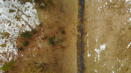 орошение : Top view of drainage channel along agricultural fields and forest in spring or autumn. Flying over the reclamation ditch. The camera moves along the water line. 4k resolution Стоковые видеозаписи