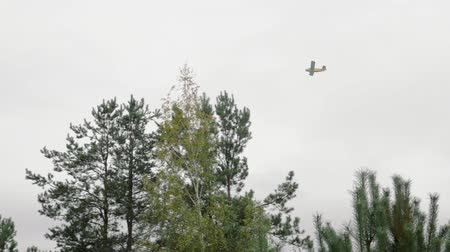 engine : Panorama of a light single-engine aircraft flying over the forest in cloudy weather. The concept of fire safety control in nature Stock Footage