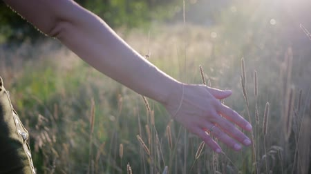 fragilidade : Close-up of the right hand of a young seductive woman touching the grass sprouts in motion. Slow motion Stock Footage