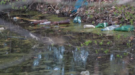 contenedor : Static shot of multi-colored plastic bottles from under drinks floating in water polluting the environment. The concept of a problem of recycling of packaging made of polymers