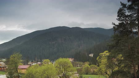 köknar ağacı : Magnificent panoramic view of the coniferous forest on the mighty mountains and the small village below them, beautiful background of gray sky. The beauty of wild virgin nature.
