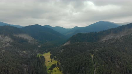 松 : Picturesque, beautiful panorama of the Carpathian mountains, shooting from the air, 4K