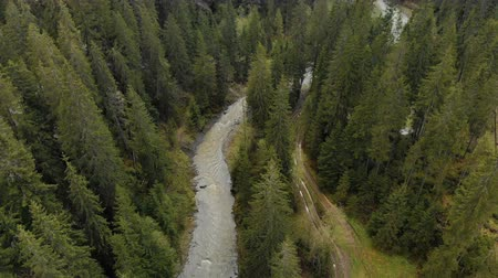 fırtına : Aerial view of the turbulent river flowing among the spruce forest in the highlands. The concept of rafting