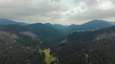 тусклый : Picturesque, beautiful panorama of the Carpathian mountains, shooting from the air, 4K