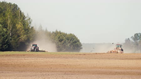 vista lateral : Two powerful tractors plowing, cultivating dry soil in hot Sunny weather on the background of coniferous forest. Many birds are flying in the foreground. From under the agricultural devices rise clouds of dust, heat from the ground and technology distorts