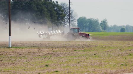metrópole : Tractor red color cultivating the soil in hot dry weather on the background of power line poles. Many birds are flying in the foreground Stock Footage