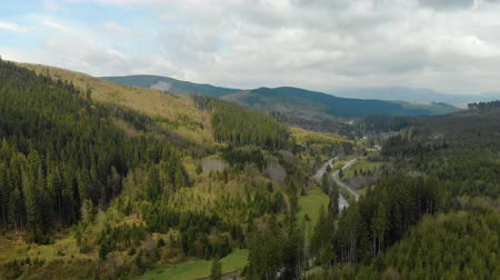 picos : Aerial view of the picturesque European nature with mountain peaks, forest with coniferous trees, fast river in the gorge Stock Footage