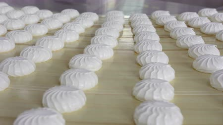 összetevők : Lots of fresh, freshly cooked marshmallows on a light background. Sweet and healthy dessert Stock mozgókép