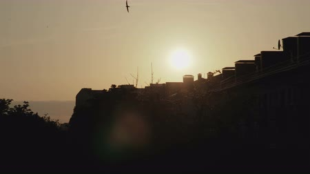 Timelapse of the setting sun for the silhouettes of the houses of the evening city against the background of many birds