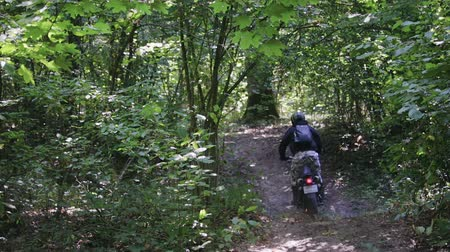 motorrad : Slow-motion shot of a man in protective gear with a helmet riding an extreme black Enduro on a forest trail among trees and branches with leaves. The art of owning a motorcycle on rough terrain Videos
