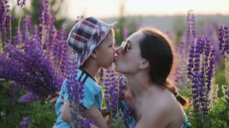 buquê : Mother in dark sunglasses kisses a cute little boy, a son in a blue t-shirt and patterned hat in a field, against a background of narrow-leaved purple lupine flowers. The concept of motherhood, adoption