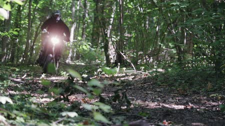 enduro : A motorcyclist in a sports protective suit rides Enduro in the forest on dry autumn leaves. Dust from under wheels. Warm sunrise in the forest. The concept of adventure tourism Stock Footage