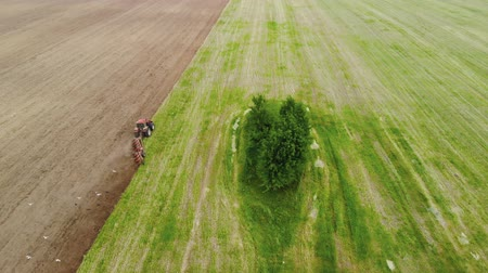 rolník : Aerial view of a farmer on a red power tractor with a working plow on the support wheels plowing the brown soil next to the green birch grove. Agricultural machine in a picturesque field