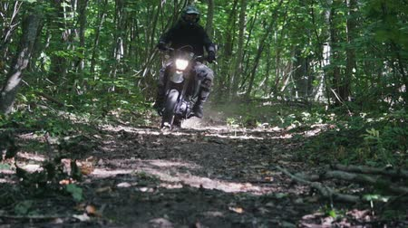 motor vehicle : A motorcyclist in a sports protective suit rides Enduro in the forest on dry autumn leaves. Dust from under wheels. Warm sunrise in the forest. The concept of adventure tourism Stock Footage