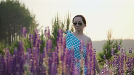 vibráló : A young girl in a blue polka-dot dress and sunglasses runs across a meadow in Lupin flowers, touching the flowers with her hands. Slow motion Stock mozgókép