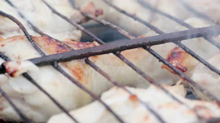 przyprawy : Close - up of many appetizing brown-crusted chicken shins roasting with onions on a rusty grill amid gray smoke. The concept of junk food