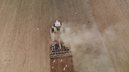 powerful : Arial type of tractor with a powerful unit, plowing, cultivating and rolling the soil before sowing. The agricultural machine is followed by many white birds gulls collecting insects Stock Footage
