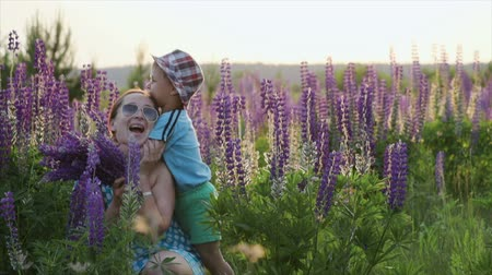 abraços : Happy mother and son playing in a field of Lupin. The boy hugs his mothers neck. Happy summer, family moments spent outdoors