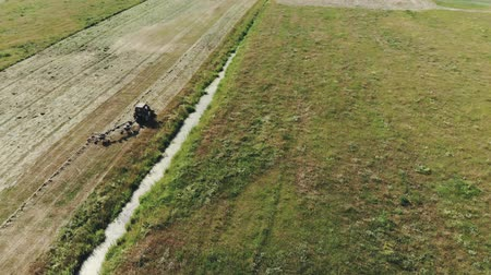 kurutulmuş : Top view of the tractor raking green grass using a rake-tedder. Hay harvesting for cattle feed