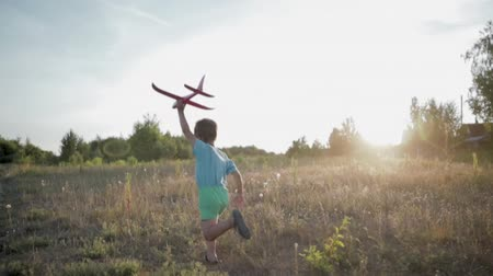 vista lateral : Hand-held shot of a young boy 3-5 years old running across a summer field in the setting sun with a pink toy airplane in his left hand. Side view, the overall plan. The concept of childhood