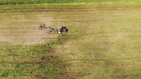 収穫 : Top view tractor rakes green grass with a rake-tedder in the pasture. Seasonal hay harvesting for livestock feed