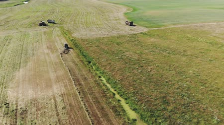 çiftlik hayvan : Top view tractor rakes green grass with a rake-tedder in the pasture. Seasonal hay harvesting for livestock feed