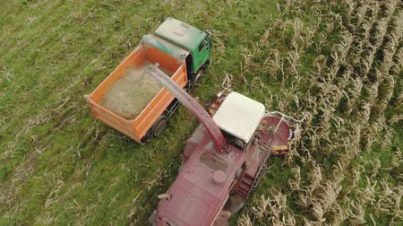 forgó : Aerial view of a red self propelled harvester with a rotary harvester cutting dry corn for silage and grain into the back of a dump truck in the fall
