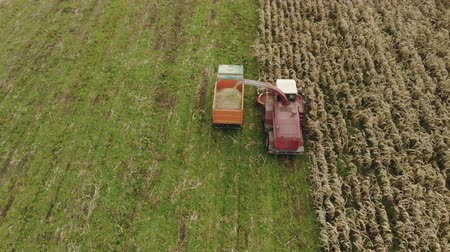 механический : Aerial view of a red self propelled harvester with a rotary harvester cutting dry corn for silage and grain into the back of a dump truck in the fall