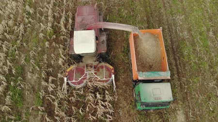 milharal : Aerial view of a red self propelled harvester with a rotary harvester cutting dry corn for silage and grain into the back of a dump truck in the fall