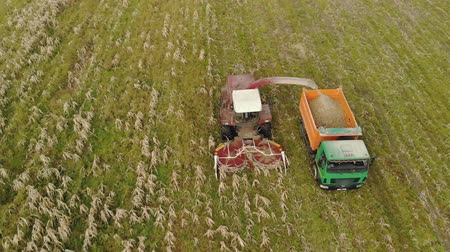 диеты : Aerial view of a self-propelled harvester with a rotary Reaper, harvesting ripe dry corn in the body of a truck