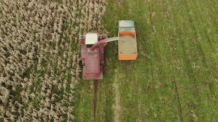 шелуха : Aerial view of a red self propelled harvester with a rotary harvester cutting dry corn for silage and grain into the back of a dump truck in the fall