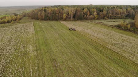 none : Aerial view of a self-propelled harvester with a Reaper, harvesting dry corn in the back of a tractor on the edge of the autumn forest. The concept of agribusiness
