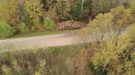 лесозаготовки : Aerial view of stacks with lots of logs, trunks of felled trees stacked along the gravel road. The concept of the destruction of the forest