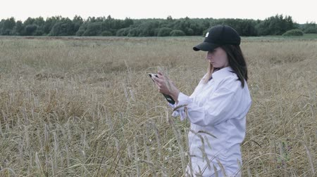 ekili : An agricultural engineer, a young girl in a white shirt and cap stands in a field with wheat, holding a tablet in her hands and entering data before harvesting. The concept of agribusiness