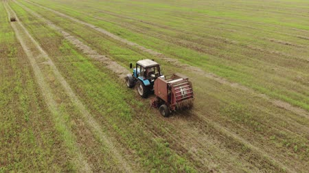 bales : A farmer on a tractor rides on a wheat field after harvesting and makes hay bales. Agricultural machinery collects dry straw in rolls. Aerial view