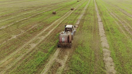 coletando : A farmer on a tractor rides on a wheat field after harvesting and makes hay bales. Agricultural machinery collects dry straw in rolls. Aerial view