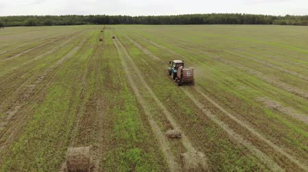 rulolar : Aerial view of a tractor with a trailer baler, producing the pressing of straw rolls on a harvested agricultural field. The concept of agribusiness