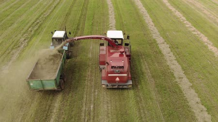 coletando : Aerial view of a farmer on a self-propelled picker collecting mowed crushed hay in the body of a tractor trailer. The concept of agribusiness. Forage for livestock