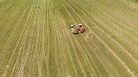 yem : Aerial view of a farmer on a self-propelled picker collecting mowed crushed hay in the body of a tractor trailer. The concept of agribusiness. Forage for livestock