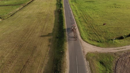 metrópole : Aerial shot of a farmer on a powerful tractor with a plow in a transport position rides on a narrow asphalt road in the countryside between a pasture and a field. Concept of agribusiness, village life