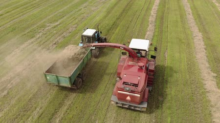 cortador : Belarus, Boyars-July 31, 2019. Aerial view of a red self-propelled mower harvesting juicy grass for silage in a tractor trailer in Sunny summer weather. The concept of agribusiness