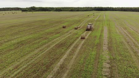 склеивание : Aerial view of a tractor pressing straw into rolls after harvesting grain crops in an agricultural field in cloudy weather. Forage for the winter Стоковые видеозаписи