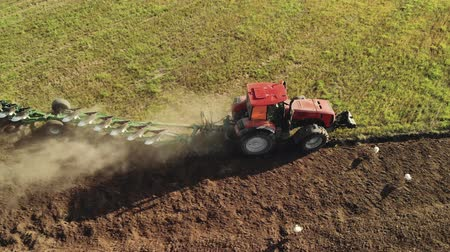 borowina : Aerial view of a farmer on a modern tractor cultivating brown dusty soil on a Sunny summer evening. Many white storks follow the agricultural machine in search of food. The concept of agribusiness