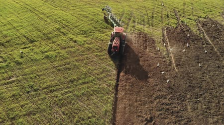 フォロー : Aerial view of modern red tractor with tillage unit preparing dark fertile brown soil. The farmer plows the land for sowing. A lot of birds and white storks follow the plough in search of food