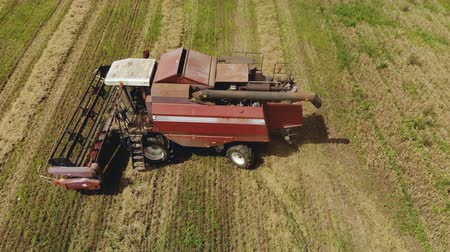 olgun : Top view of a dusty combine harvester with a working thresher and reel. The agricultural machine is deployed to perform the technological process and unload the hopper