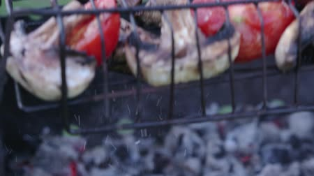 grillowanie : Close-up of fresh, colorful vegetables roasted on the grill, over hot coals. The grid with food is turned over, so as not to burn. Food for a picnic, cooking a light dinner in the fresh air