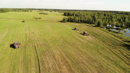 owies : Aerial view of four harvesters cutting ripe oats from farmland near the edge of the forest and swamp. The concept of grain production. Drone flies around agricultural machines in an arc