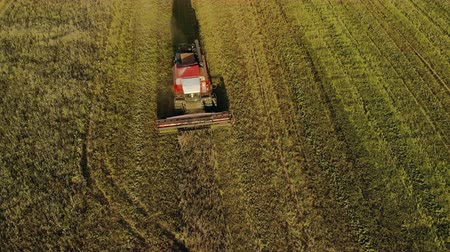 tahıllar : Aerial view. Flying over a combine harvester removing dusty oats in a field of farmland in the autumn evening. The concept of agribusiness