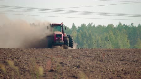 solo : Front view of a farmer on a red tractor plowing the dusty arid soil. The farm car is followed by hungry birds. Agribusiness in the spring Stock Footage